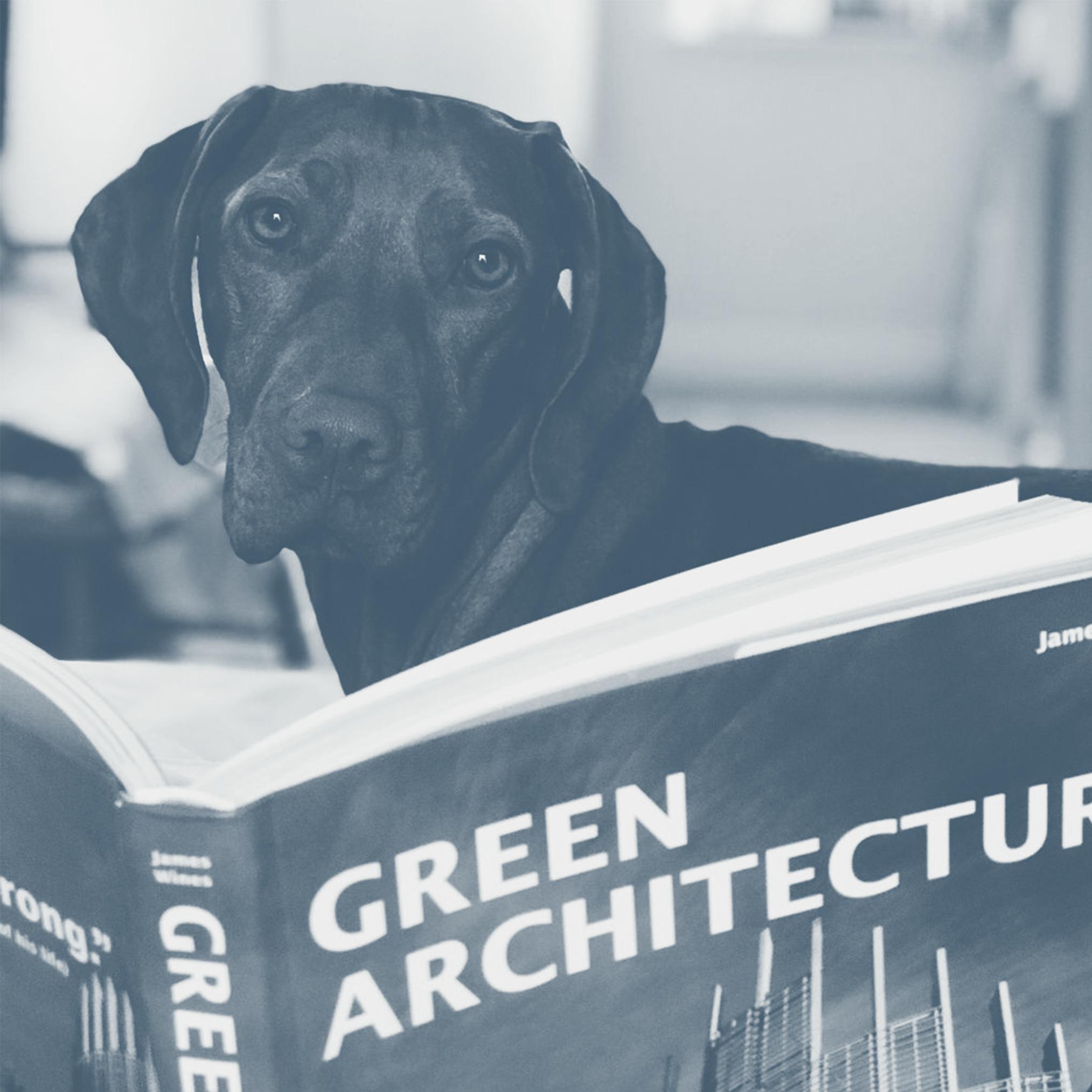 Croft Architecture Wellbeing